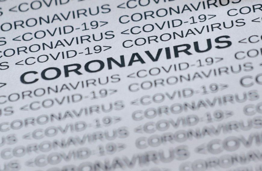 Korona Virüsler Hakkında Genel Bilgiler